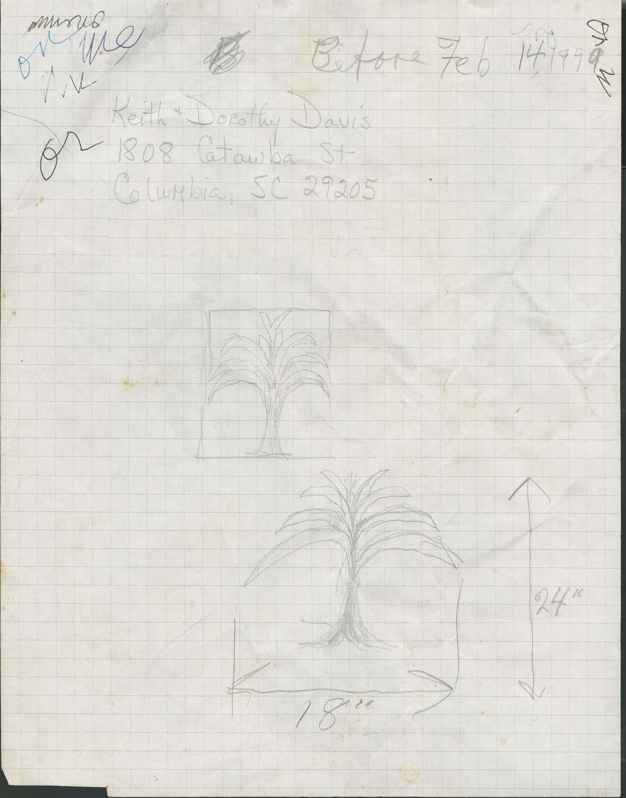 1808 Catawba Street, Columbia, South Carolina drawing of Palmetto trees and hearts.