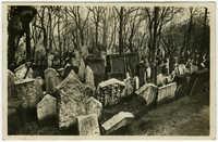 בהק' הישן בפראג / Praha. Skupina hrobů na starém židovském hřbitově. / Prag. Grabmalgruppen am alten jüdischen Friedhof.