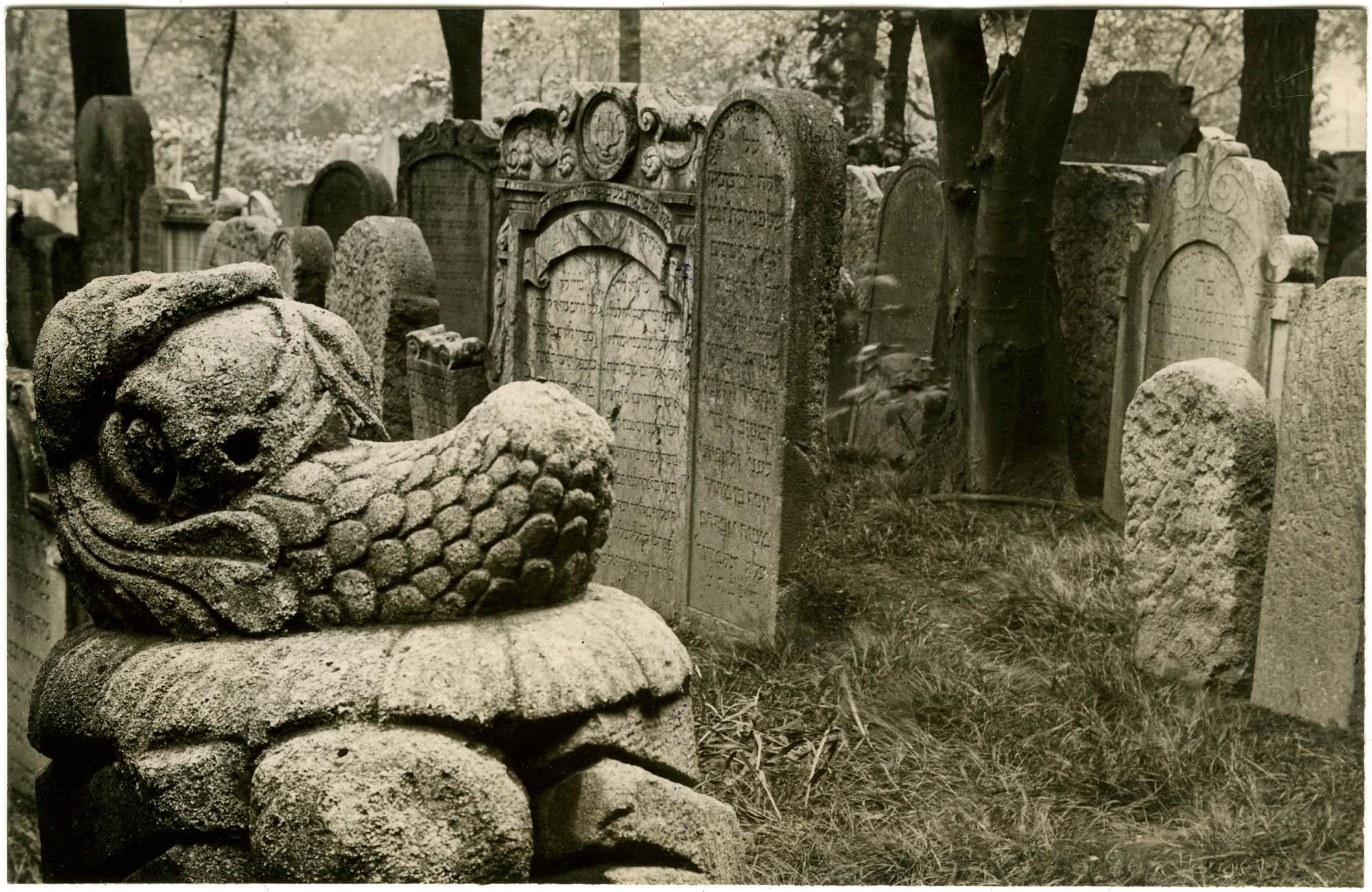 [Jewish cemetery, Rossau]