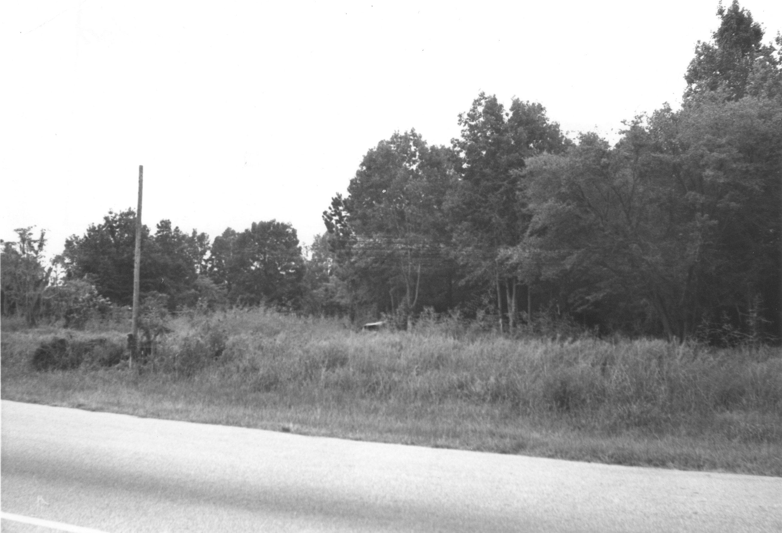 US Route 17 Photo 639
