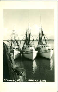 Shrimp Boats Beaufort, S.C.