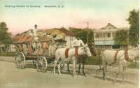 Hauling Cotton to Ginnery Beaufort, S.C.