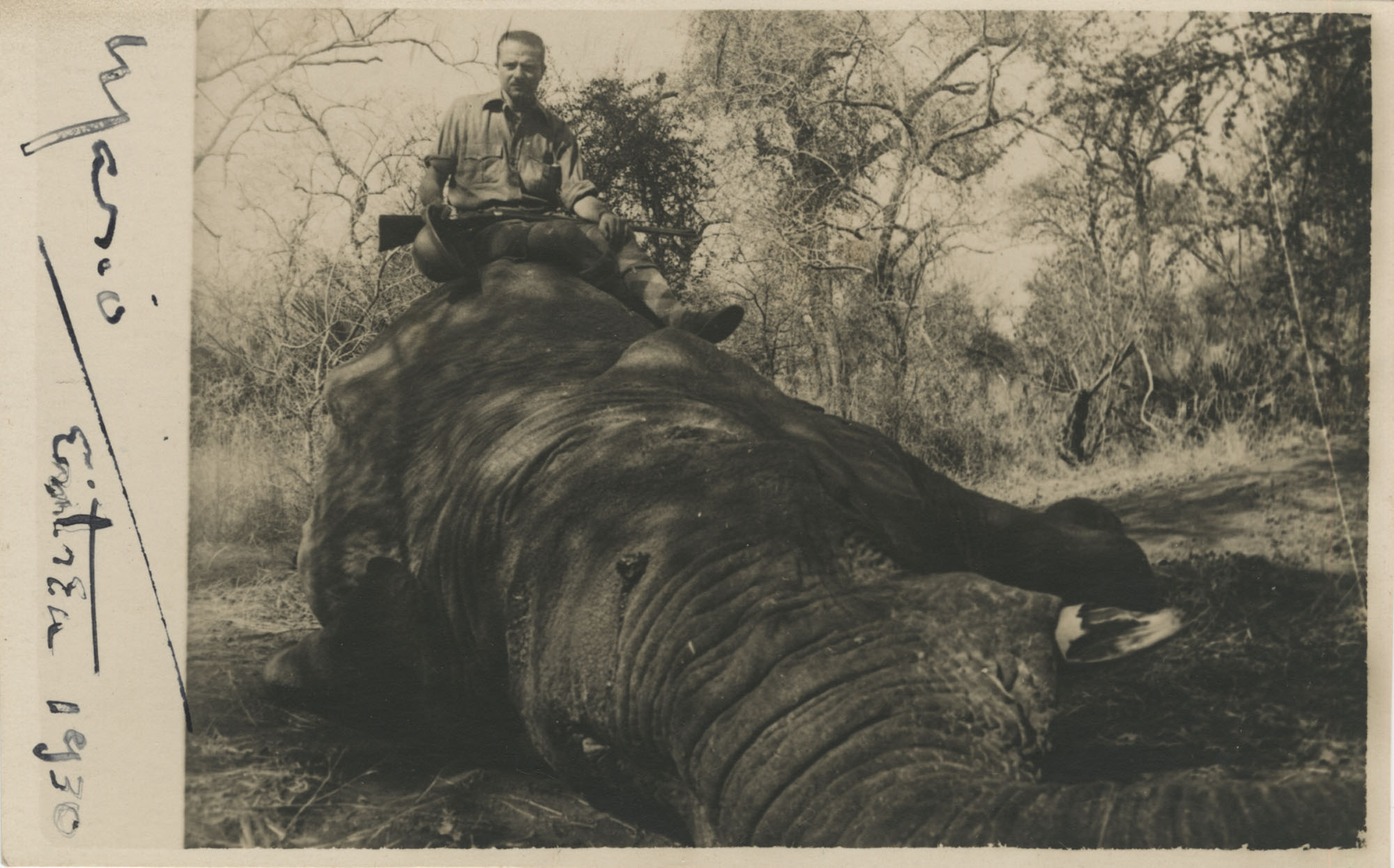 Mario Pansa atop an elephant in Abyssinia, Photograph 1