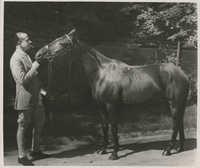 Mario Pansa leading a horse, Photograph 1