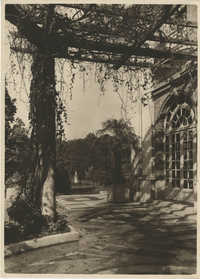 Interior of the Royal Italian Consul in Sri Lanka, Photograph 24