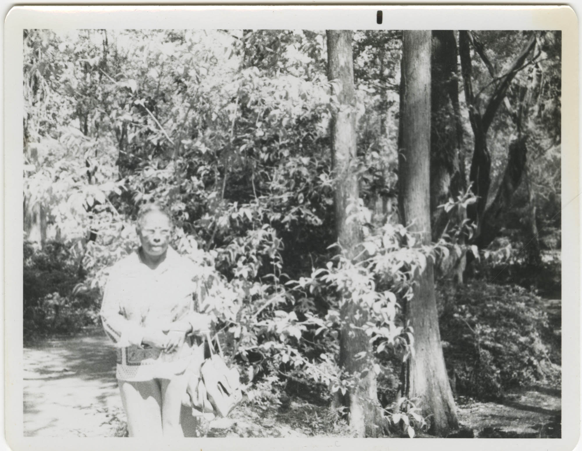 Photograph of a Woman Standing Outdoors