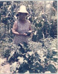 Photograph of a Dorothy Delida