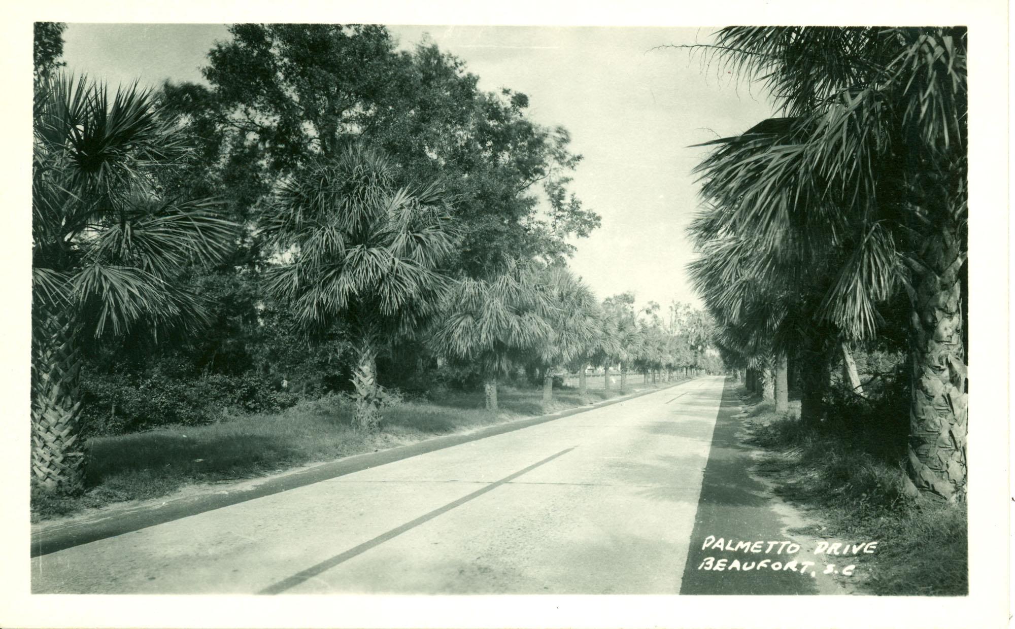 Palmetto Drive, Beaufort, S.C.