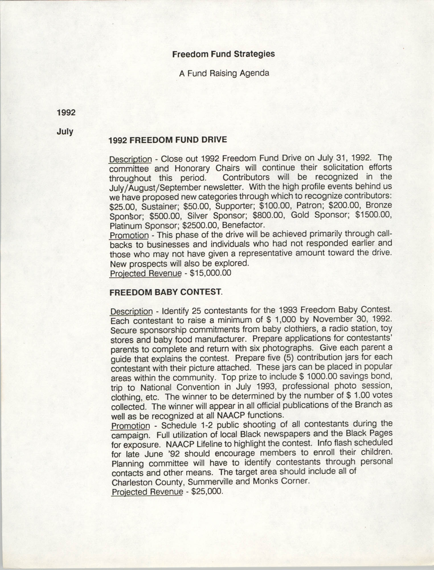 Fund Raising Agenda, Freedom Fund Strategies, 1992