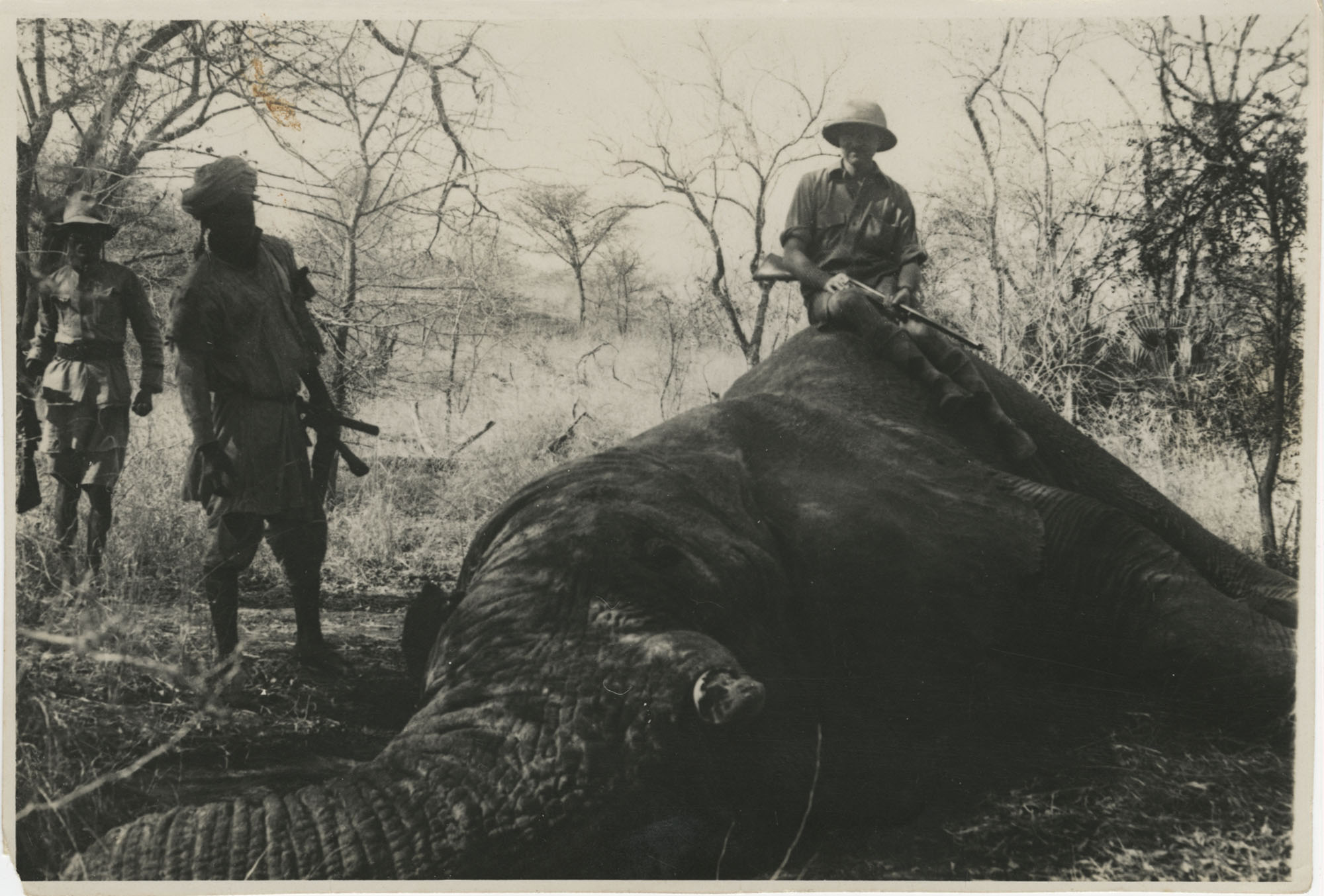 Mario Pansa atop an elephant in Abyssinia, Photograph 2