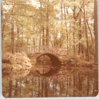 Photograph of a Small Bridge