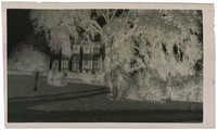 Negative of Gippy Plantation Mansion