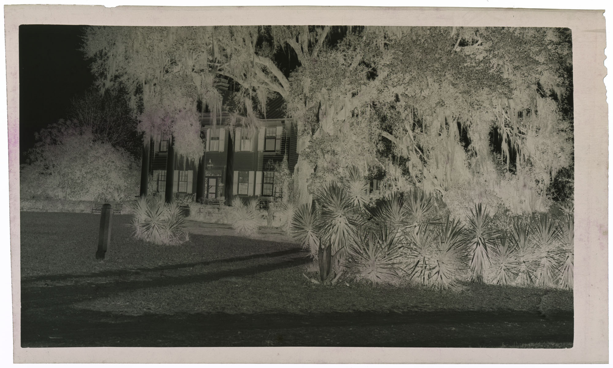 Negative of Gippy Plantation Mansion