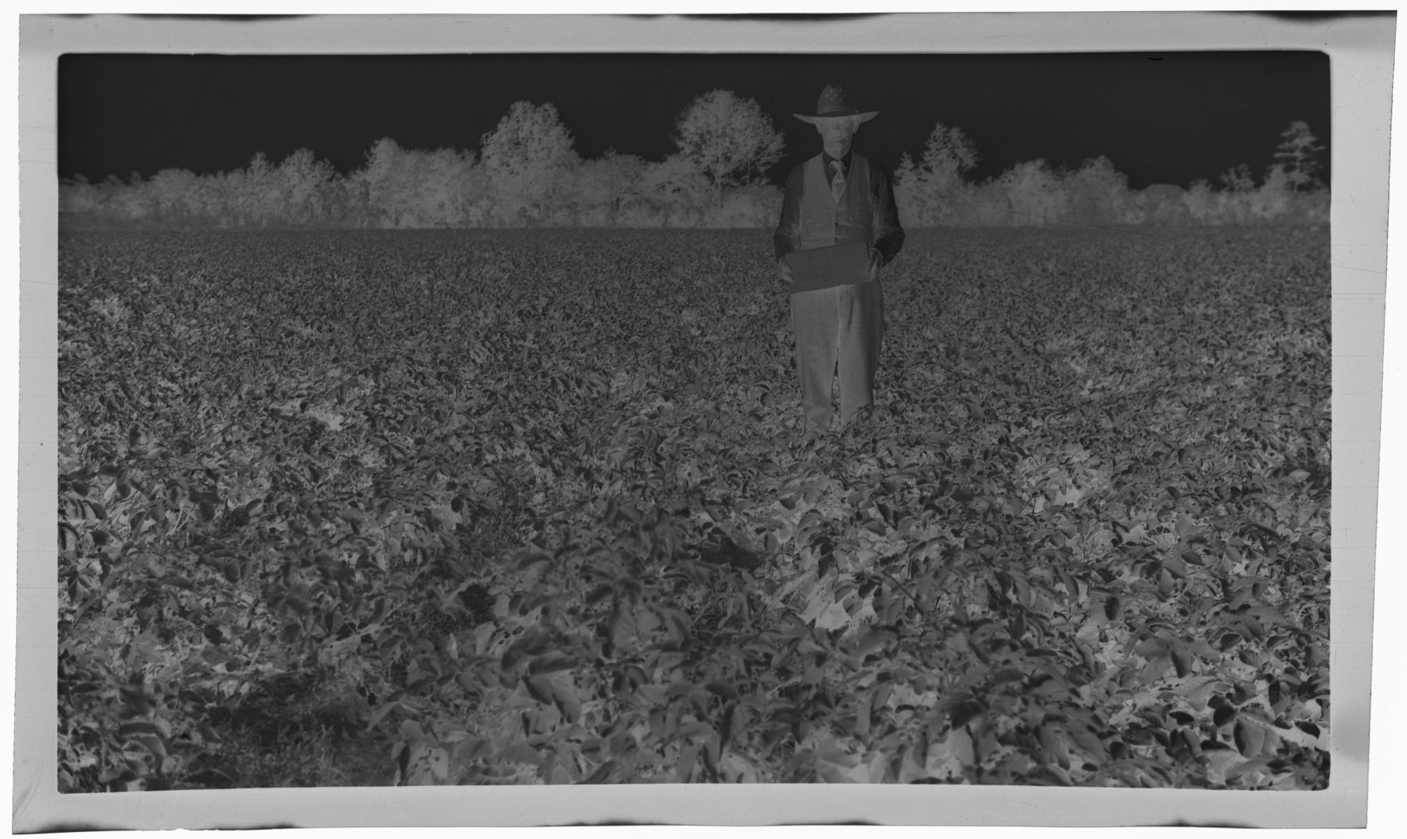Negative of Man with Illegible Sign in Field