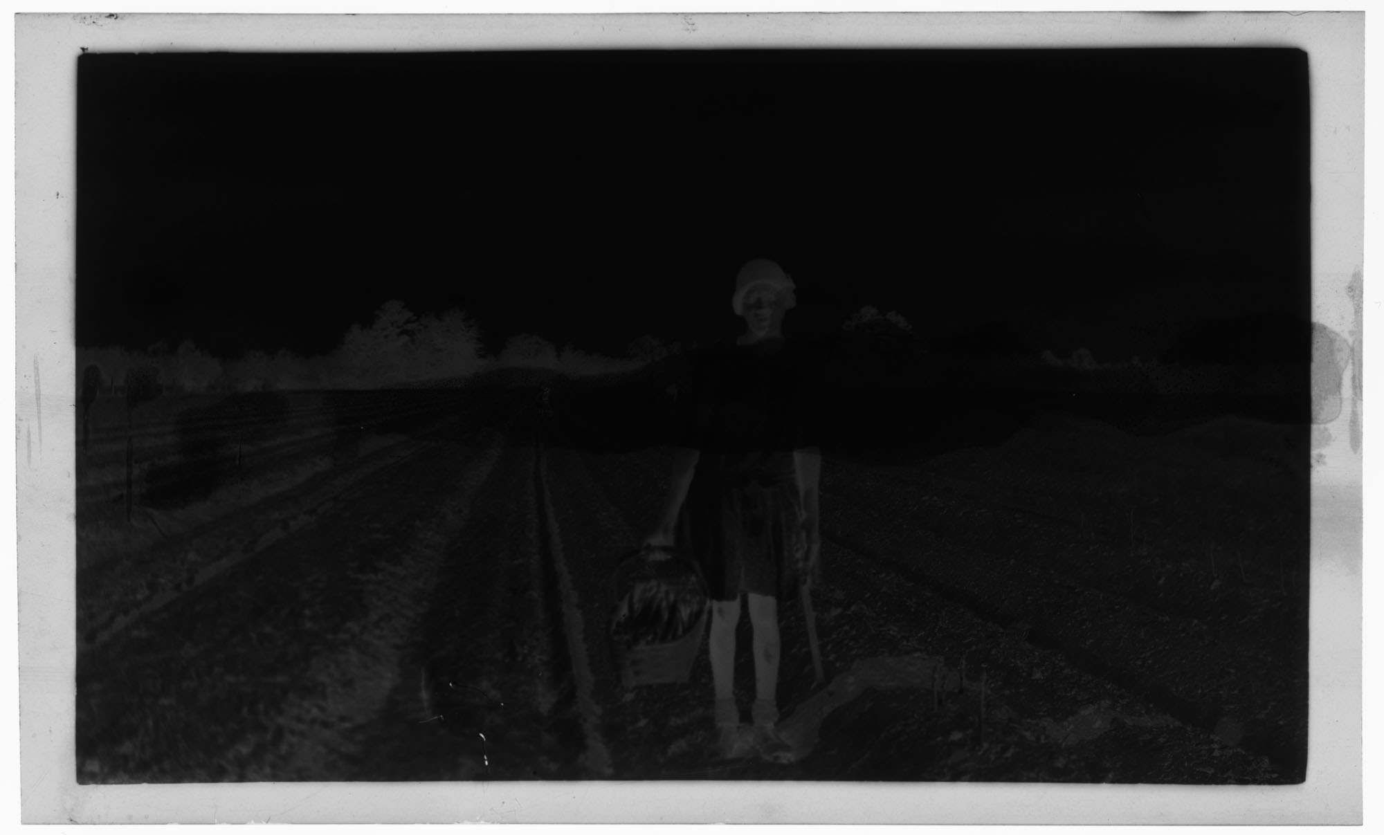 Negative of Woman Picking Asparagus