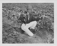 Man in a Cucumber Field