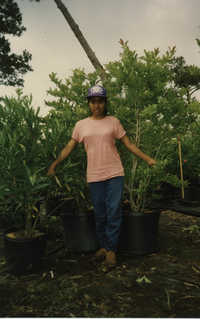 Fotografía de una adolescente trabajando con plantas  /  Photograph of Teenager Working with Plants