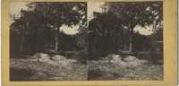 Two Mounded Graves