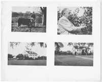 Print of Various Photographs