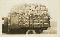 Truckload of Vegetables