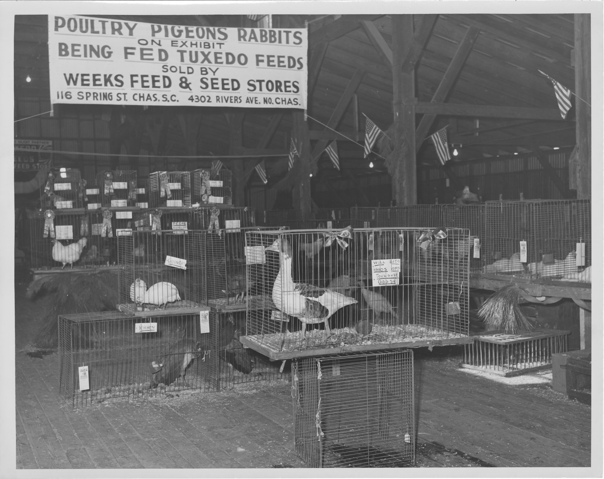 Poultry, Pigeons and Rabbits Fair Exhibit