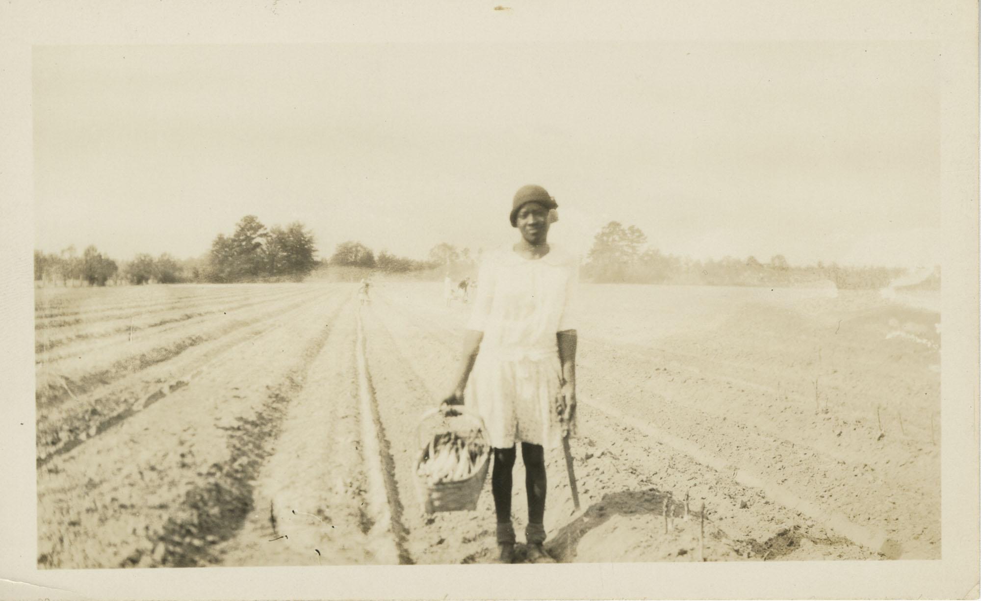 Woman Picking Asparagus