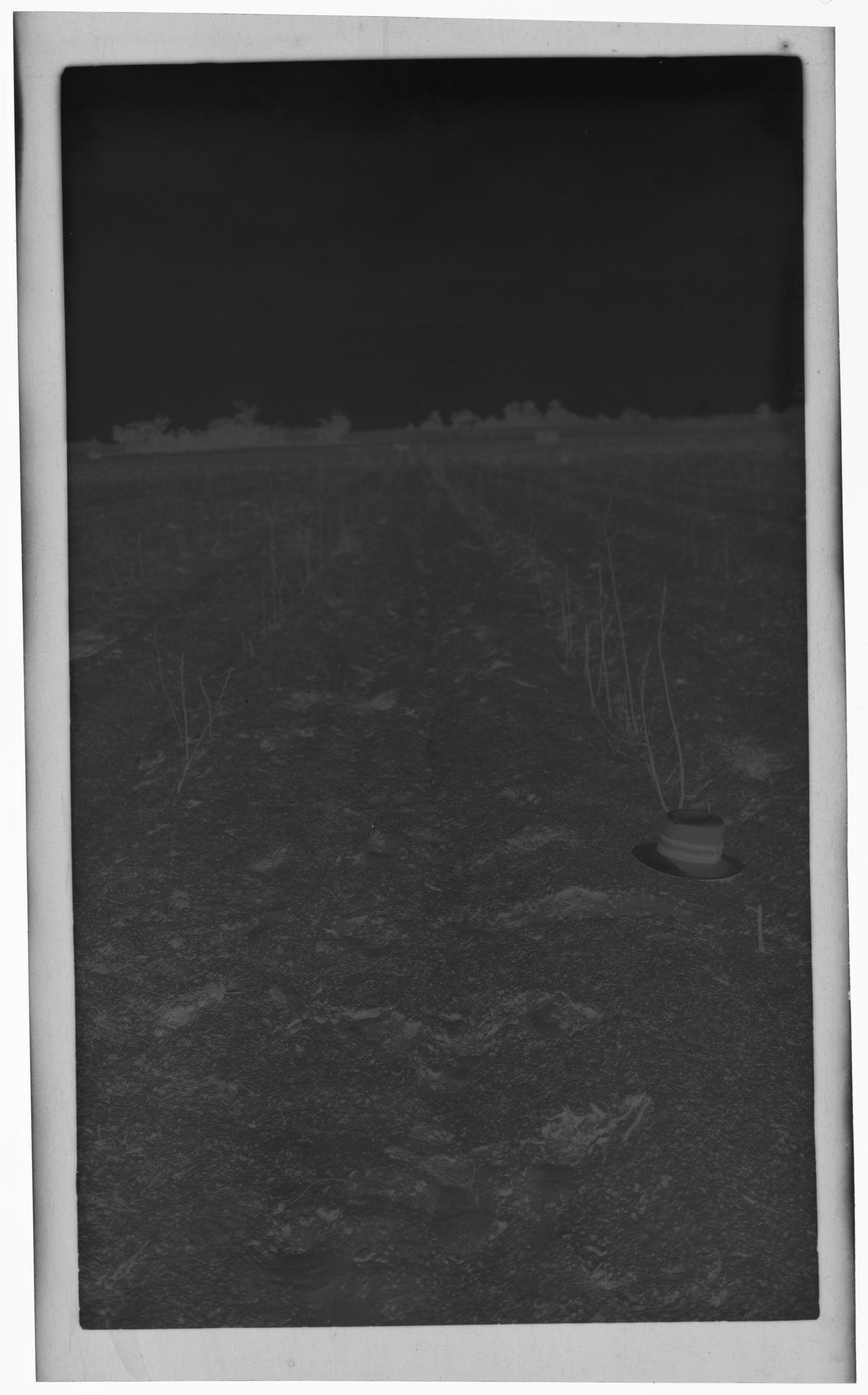 Negative of Hat in Field