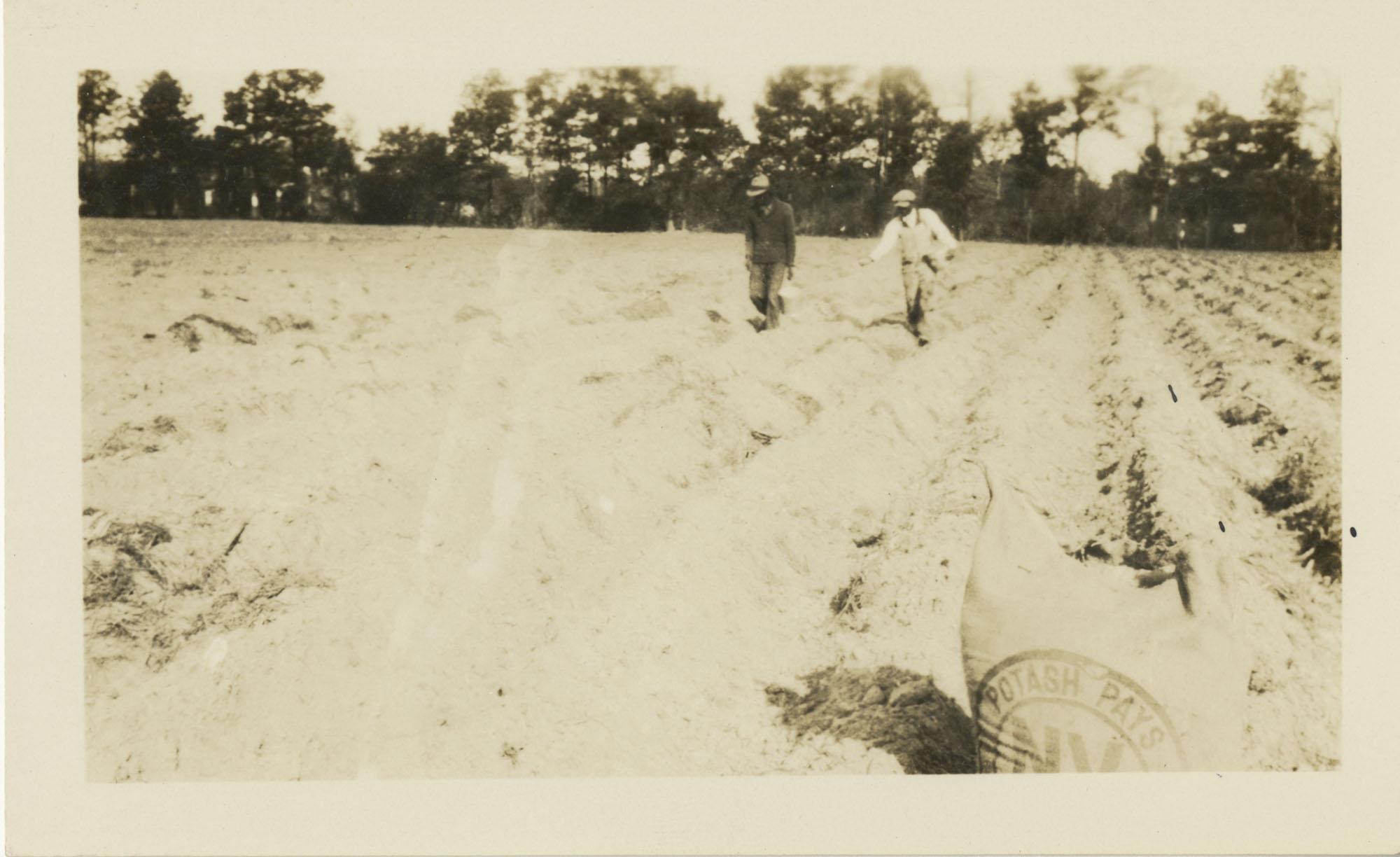 Laborers