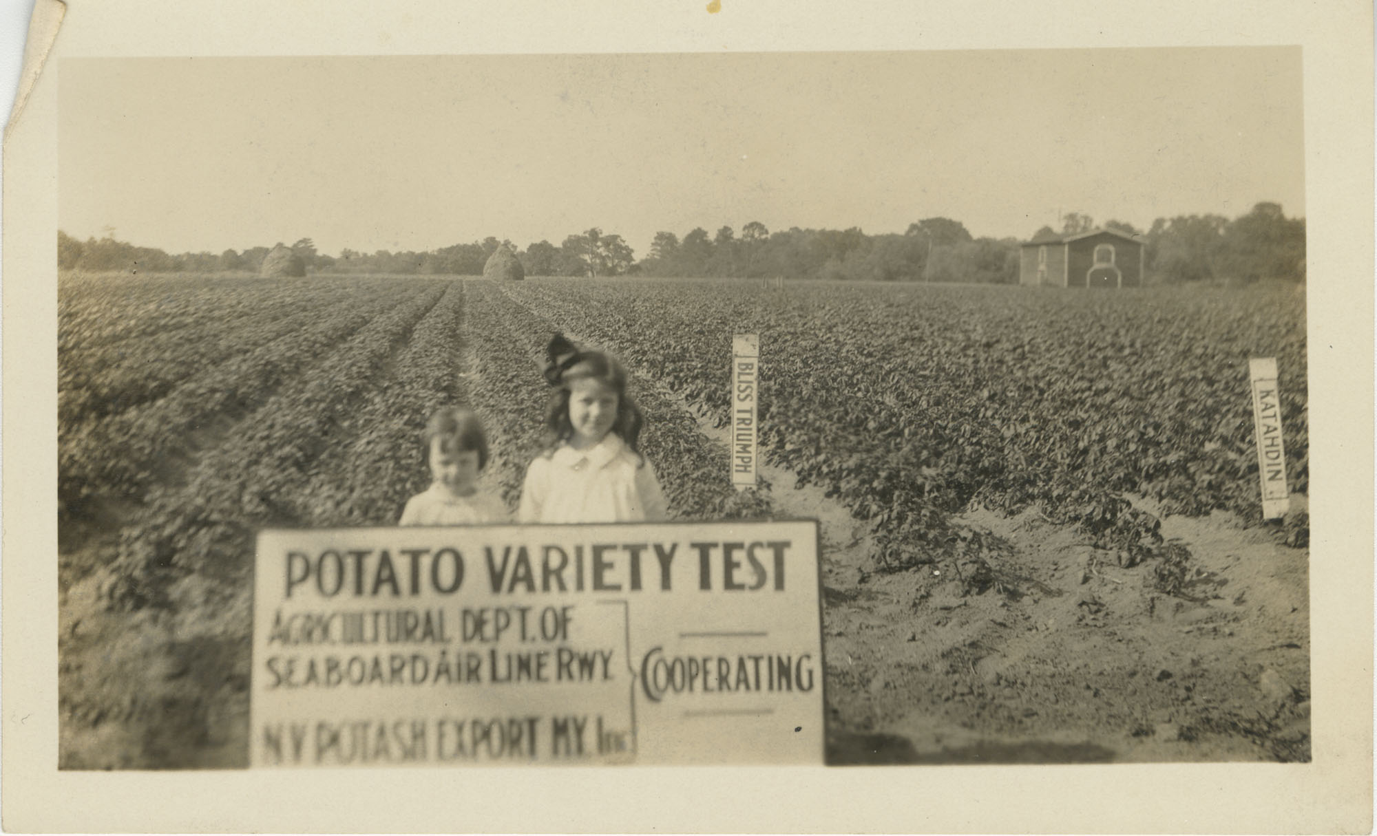 Young Girls with Potato Variety Test Sign in Field
