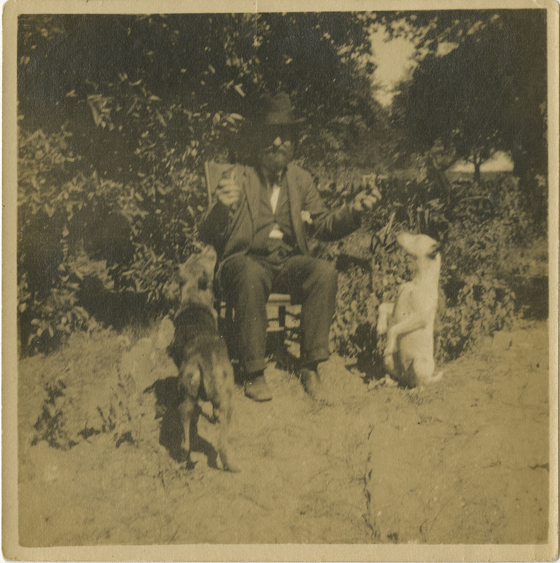 William Ellis McLeod with two dogs