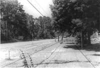 US Route 17 Photo 549