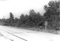 US Route 17 Photo 561