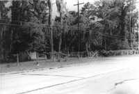 US Route 17 Photo 560
