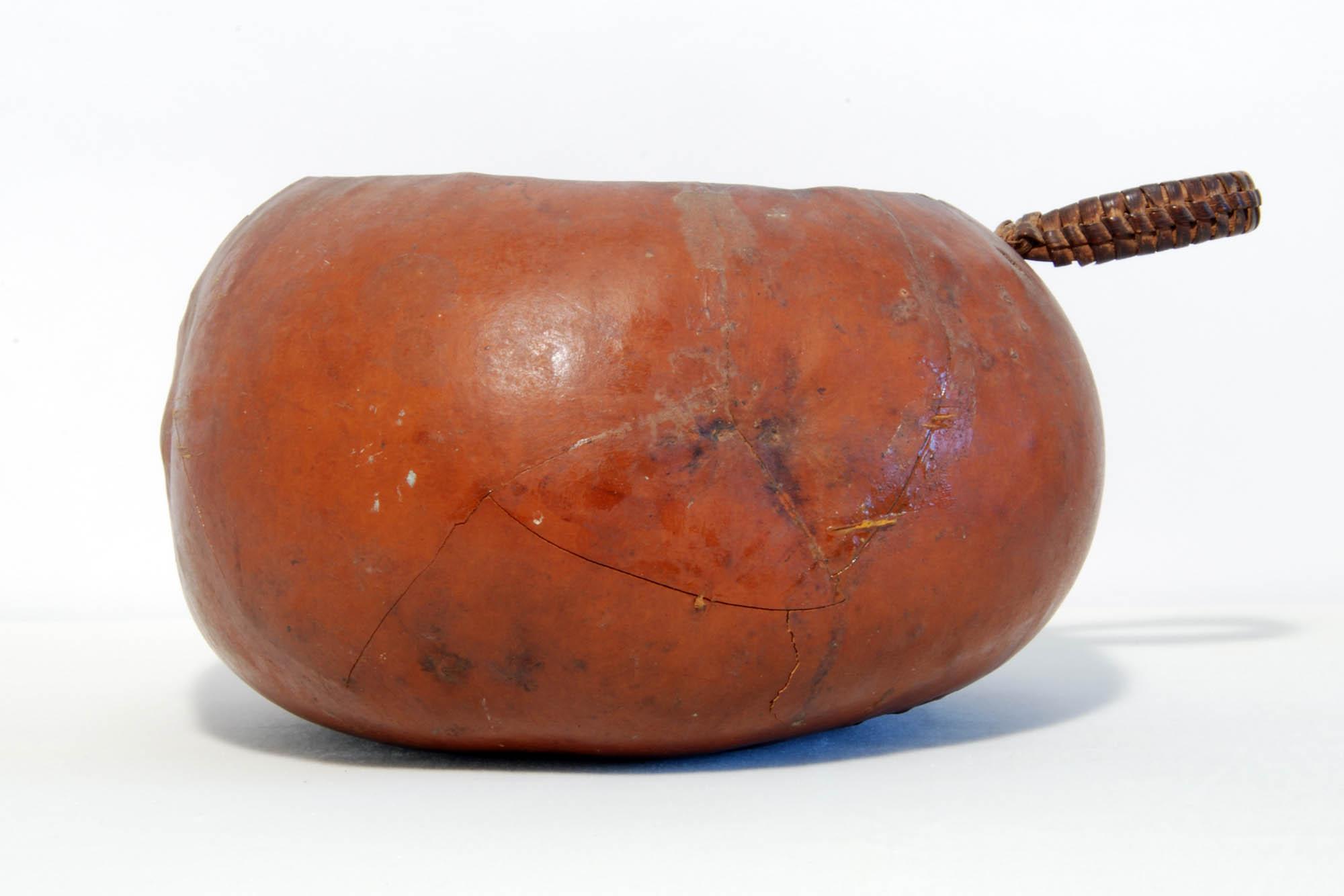 Palm wine gourd