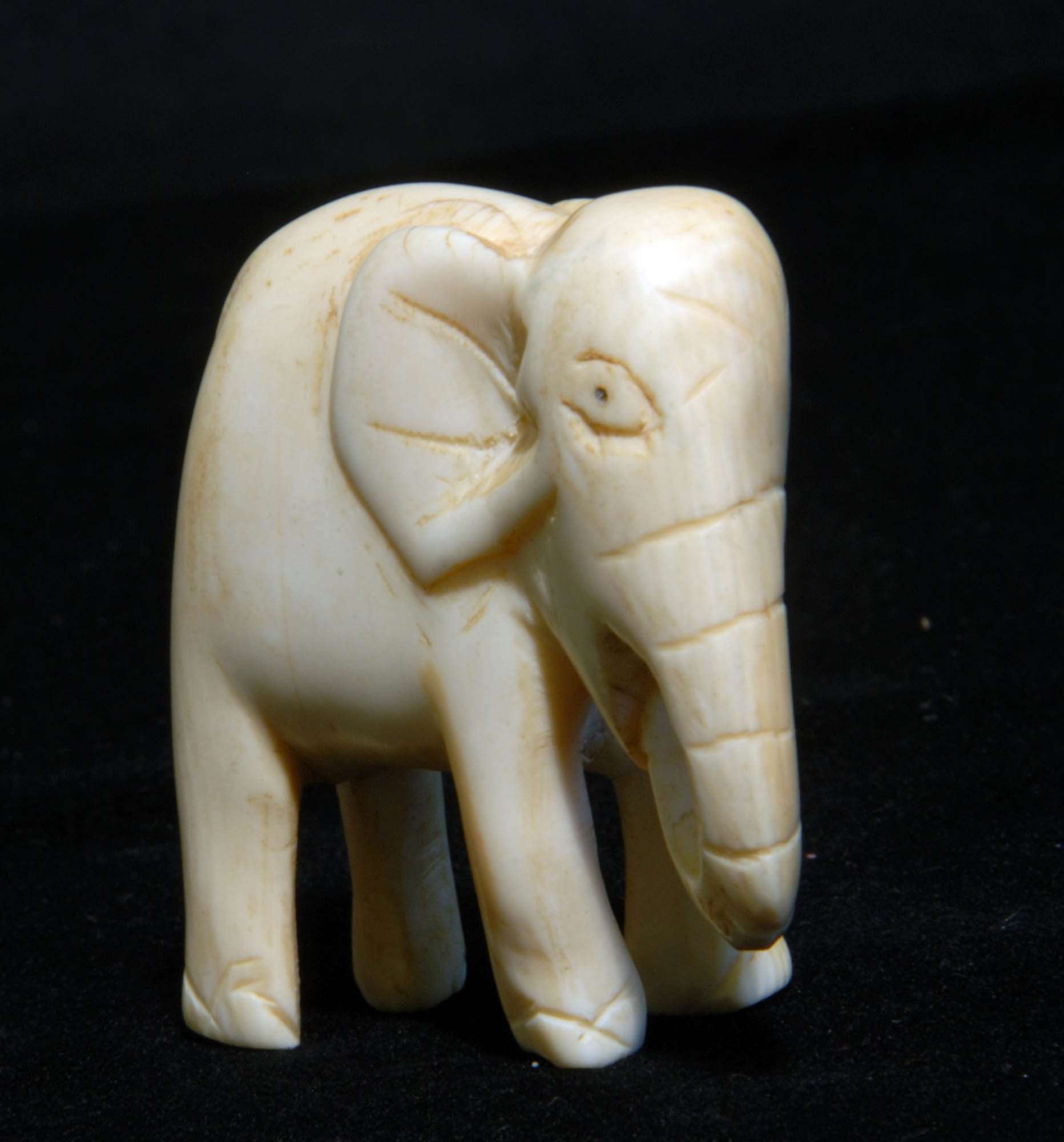 Ivory elephant carving