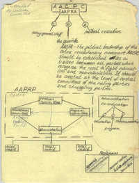 All African People's Revolutionary Party Organizational Chart