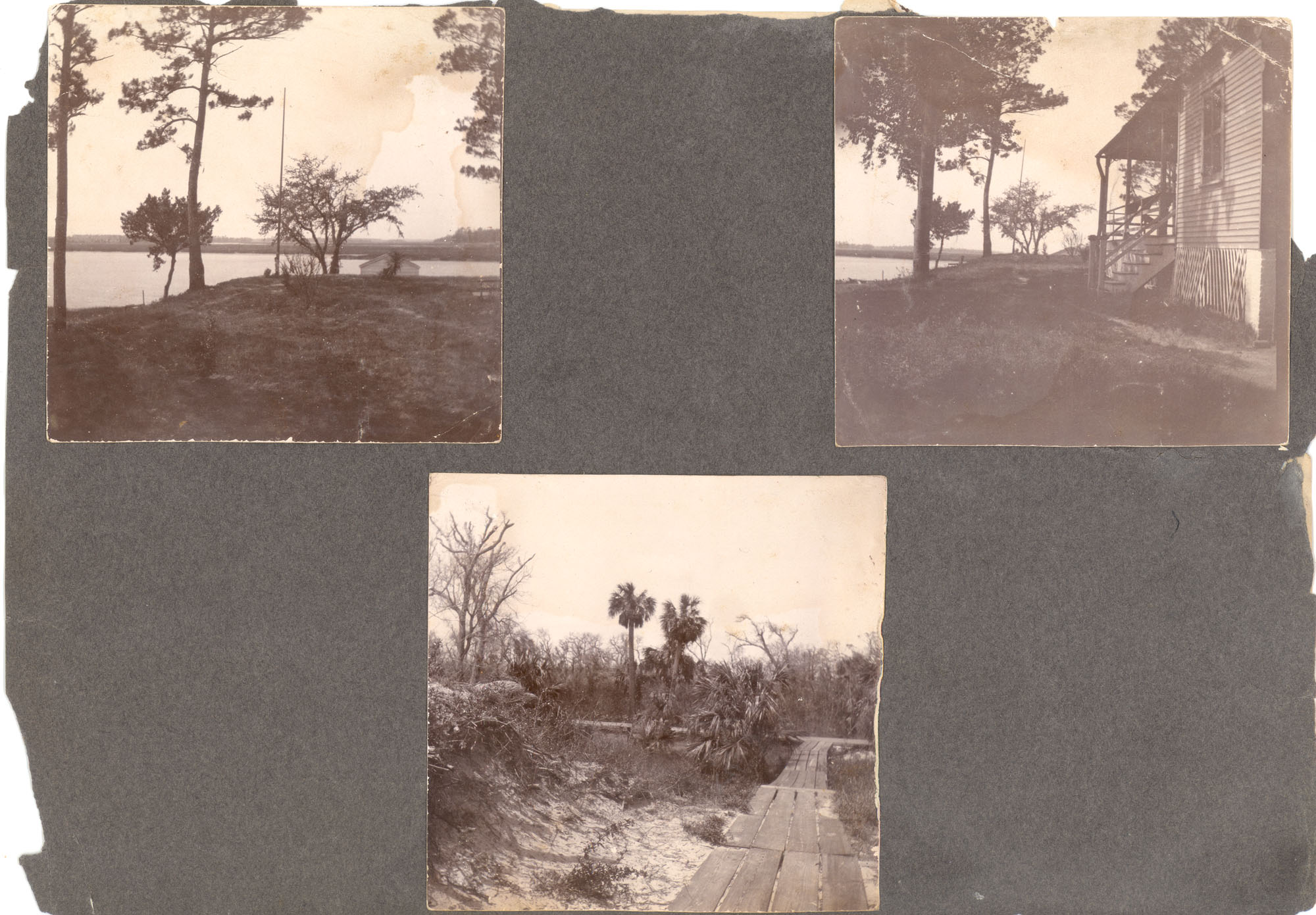 Charleston, Georgetown, and Flat Rock, Page 3 (front): Bluff by Pee Dee River / Beach Boardwalk