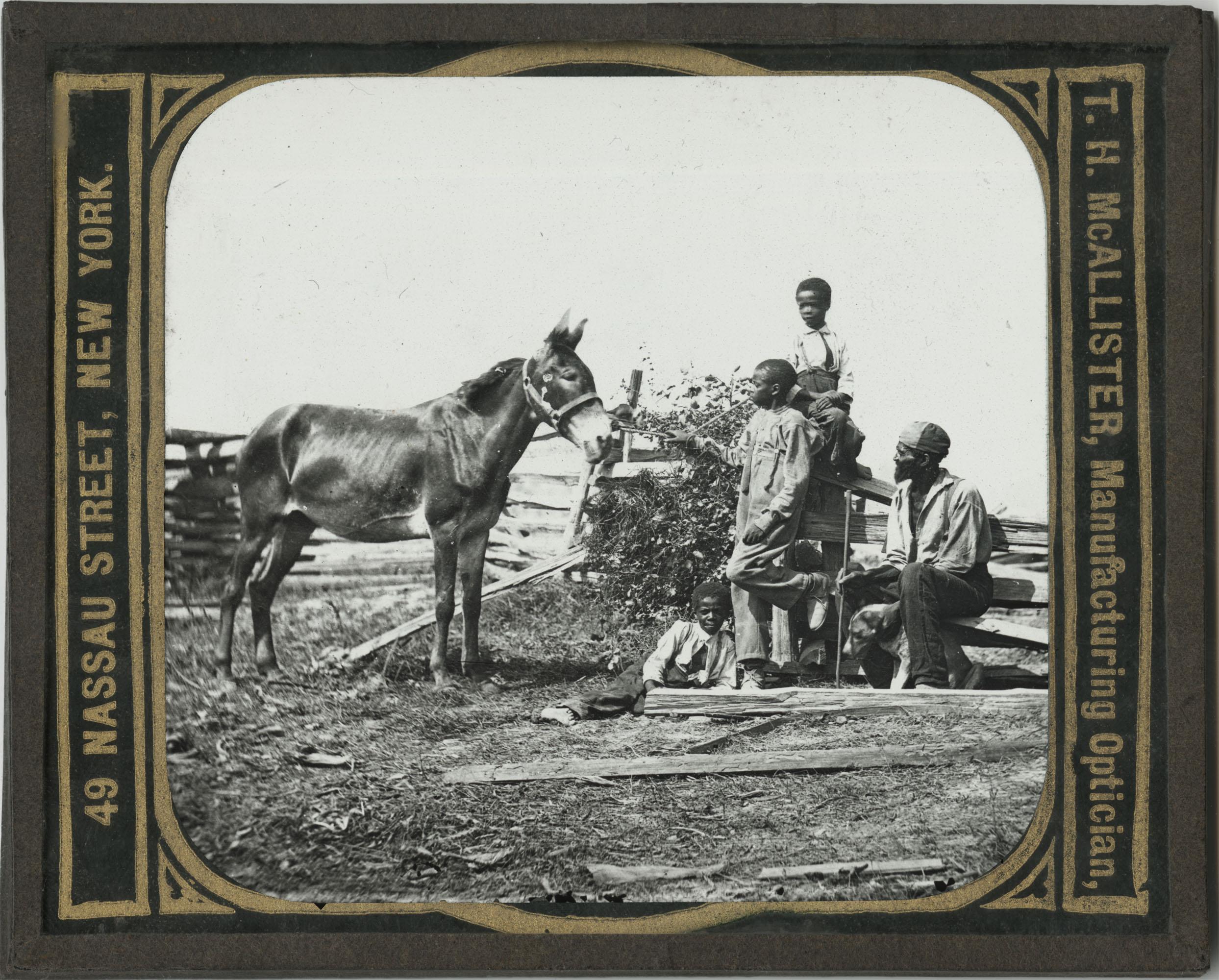 Original War Views 1861-1865: Slave Children and Man