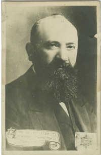 דוד וולפזון
