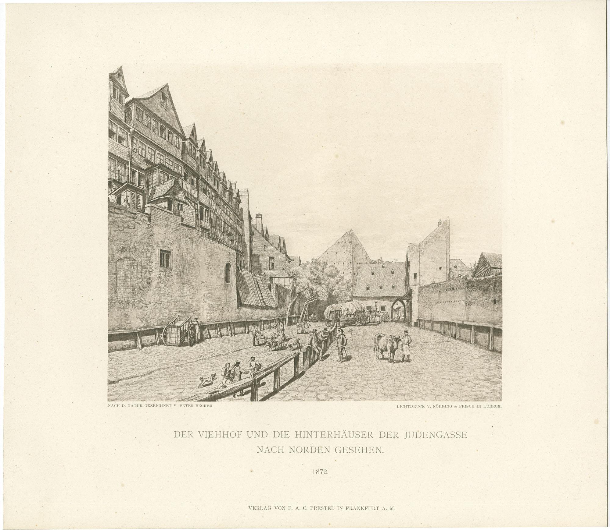 Der Viehhof und die Hinterhäuser in der Judengasse, nach Norden gesehen. 1871.