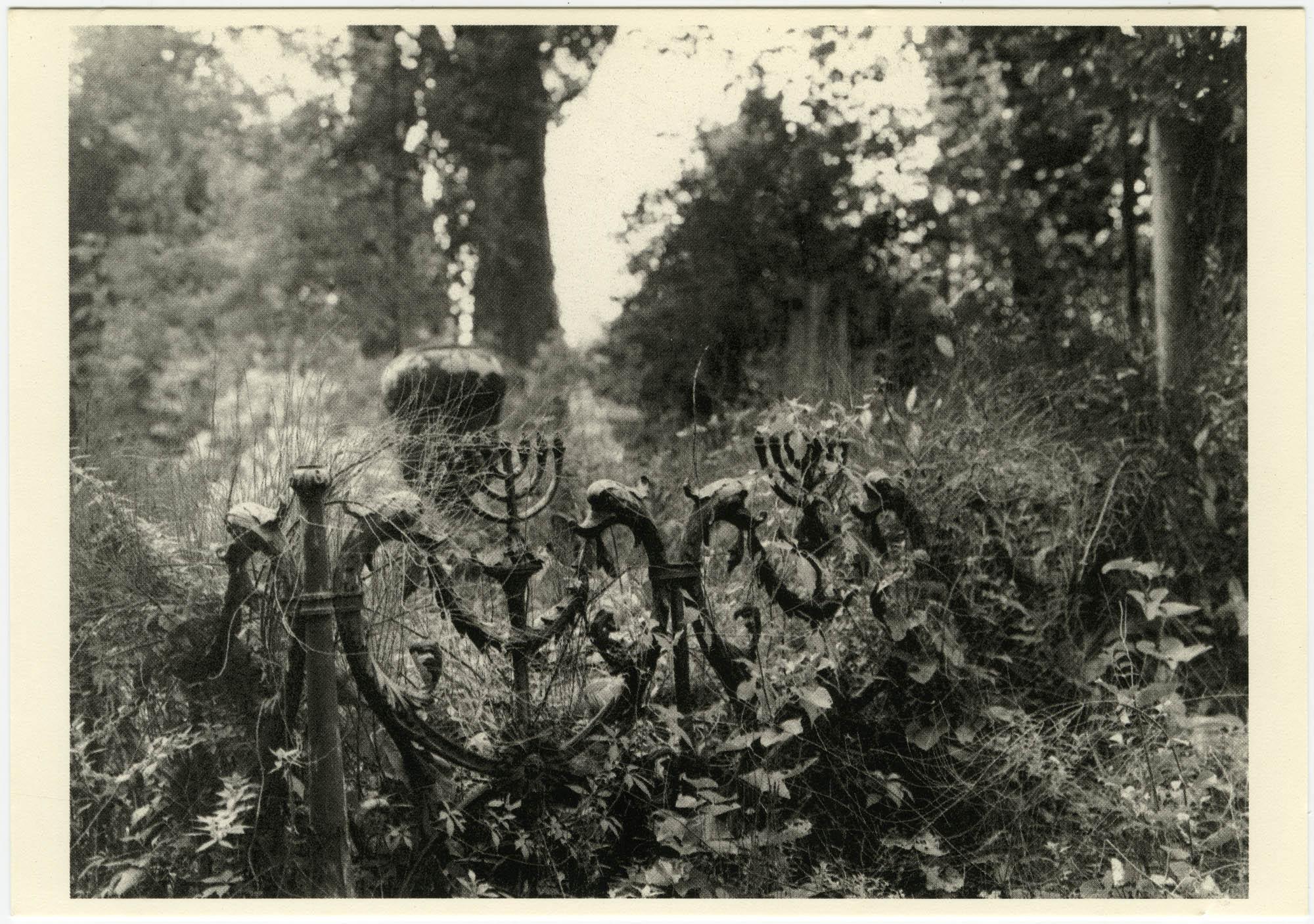 Cimitero Israelitico, Lido, Venezia