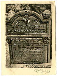שרה אשת יוסף כץ / Sara Katz-ová (606?)