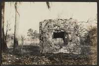 Santee-Cooper Cemetery Investigation 027