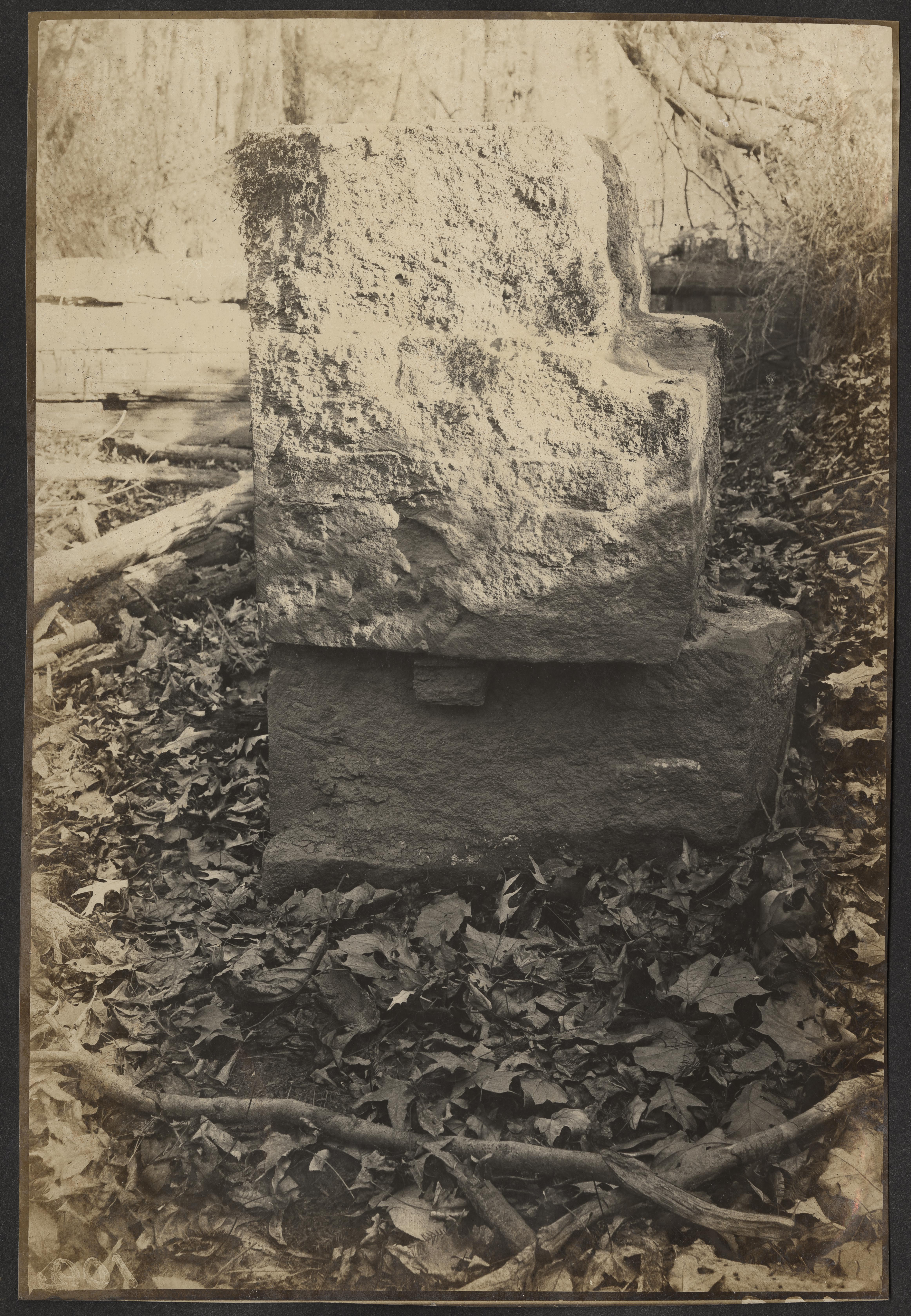 Santee-Cooper Cemetery Investigation 031