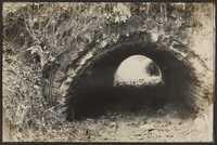 Santee-Cooper Cemetery Investigation 018