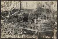 Santee-Cooper Cemetery Investigation 020