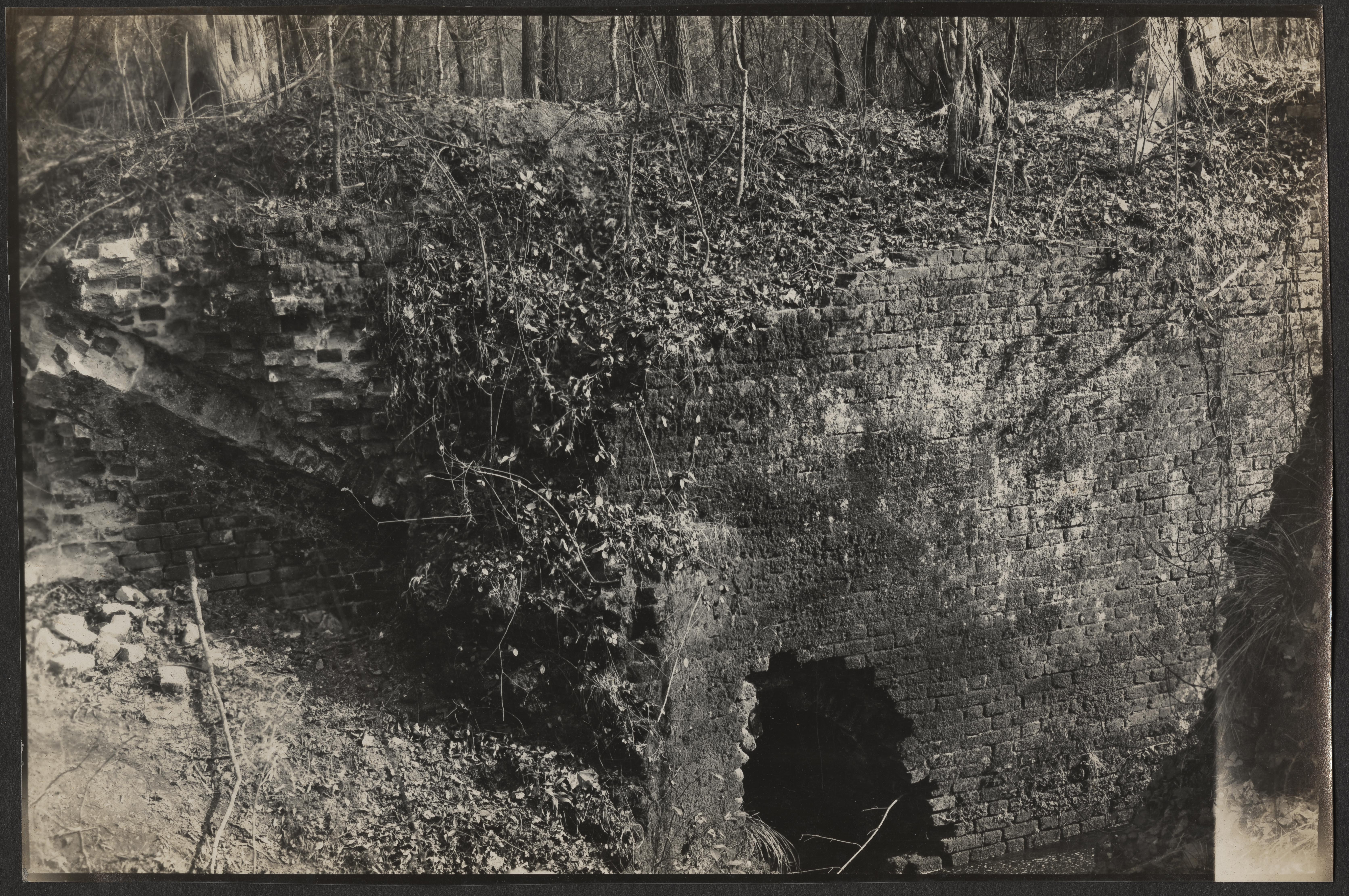 Santee-Cooper Cemetery Investigation 025