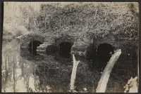 Santee-Cooper Cemetery Investigation 023