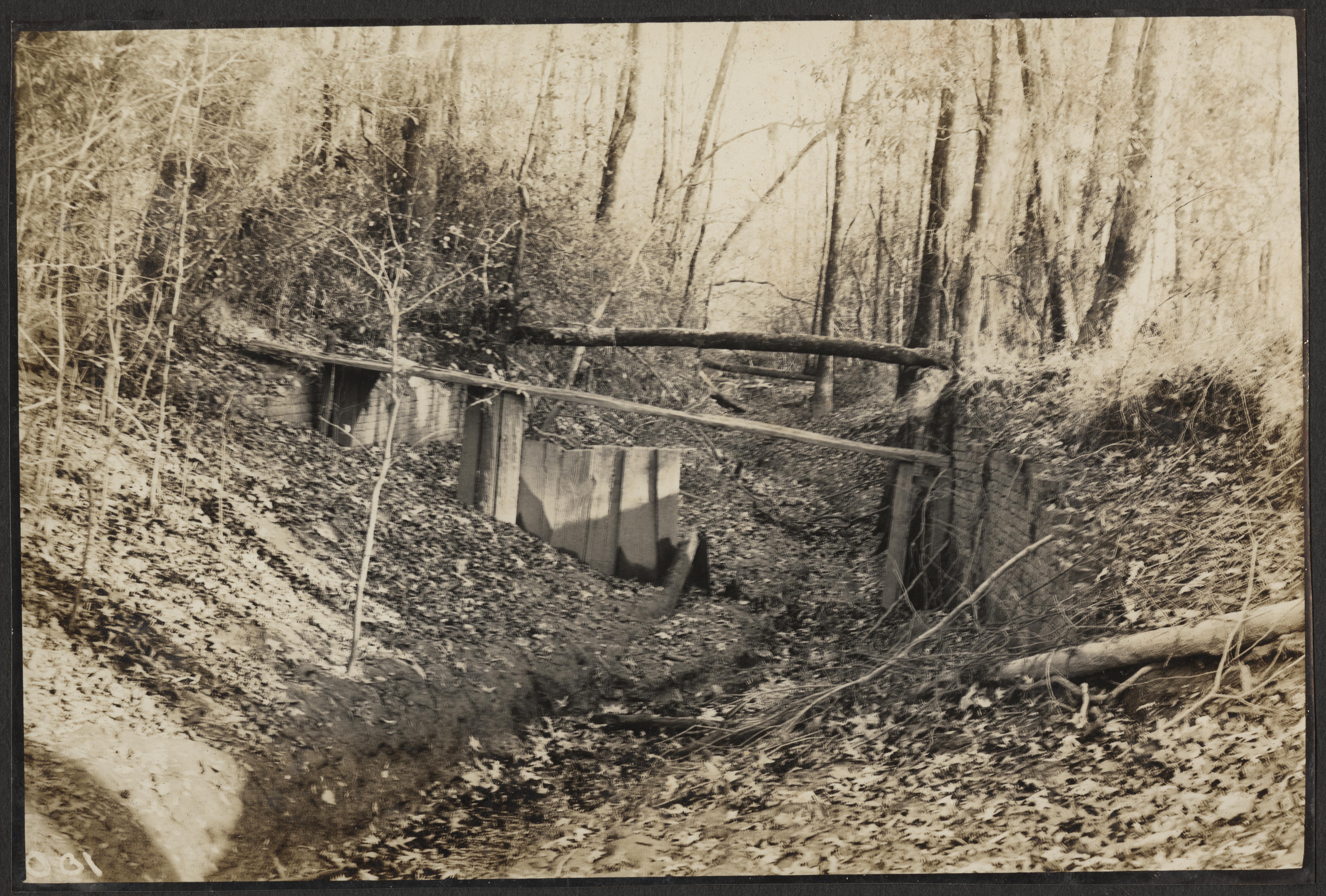 Santee-Cooper Cemetery Investigation 003