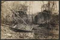 Santee-Cooper Cemetery Investigation 005